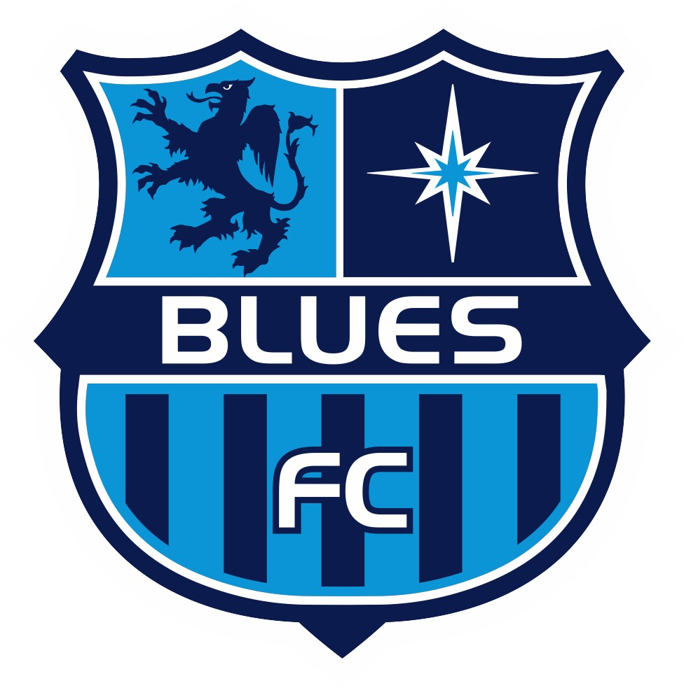 Image result for blues fc soccer
